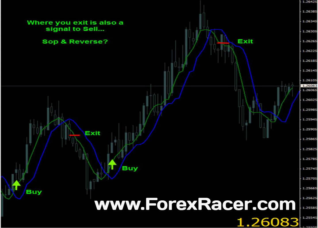 Forex autopilot system free download
