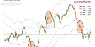 Forex Mean Reversion Indicator