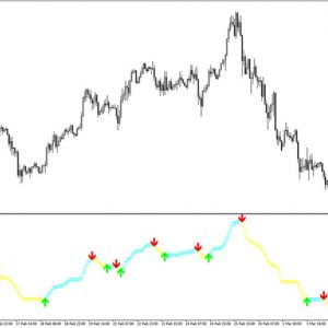 SFI Entry and Exit Indicator